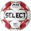 Футбольный мяч Select Flash Turf IMS (012)